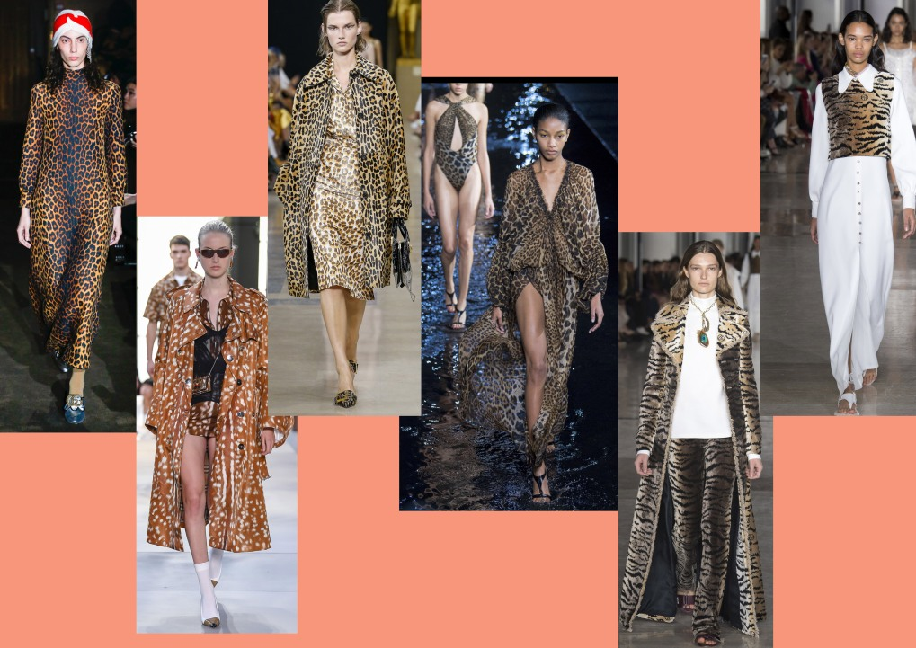 Leopard Excess